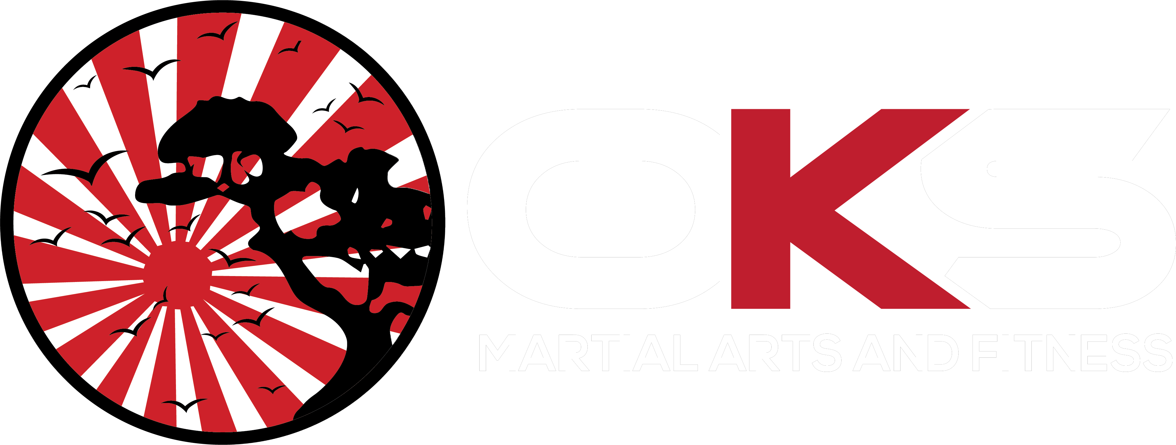 OKS Martial Arts and Fitness